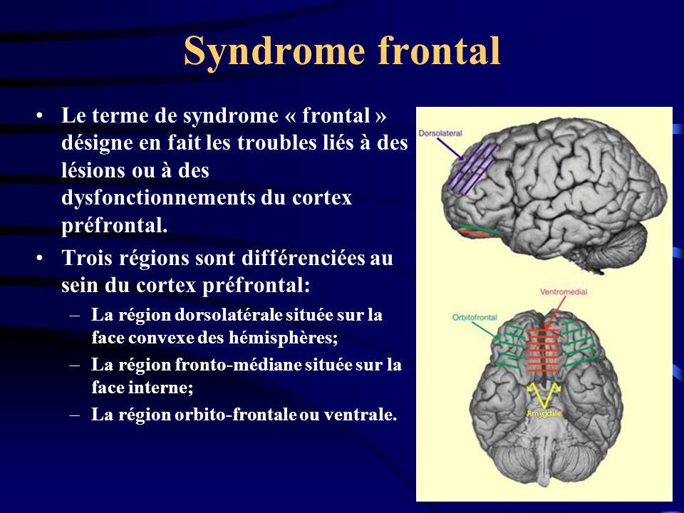 Syndrome frontal Le terme de syndrome « frontal » désigne en fait les troubles liés à des lésions ou à des dysfonctionnements du cortex préfrontal.