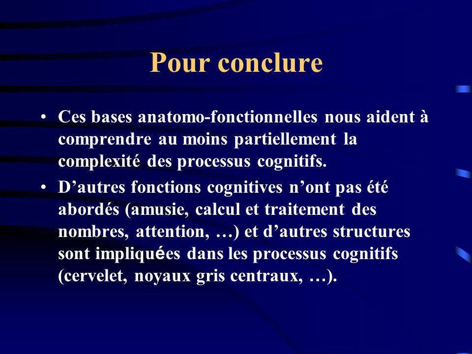 Pour conclure Ces bases anatomo-fonctionnelles nous aident à comprendre au moins partiellement la complexité des processus cognitifs.