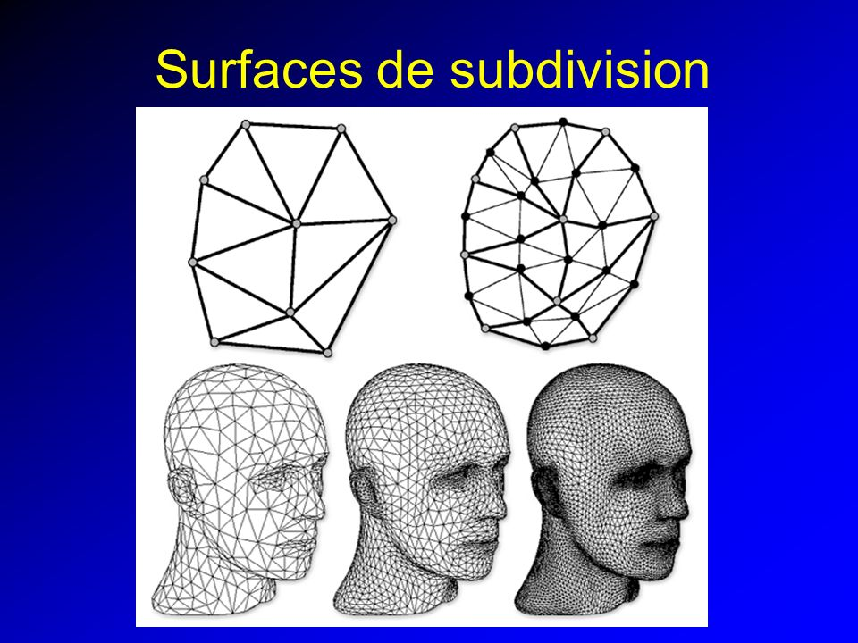 Surfaces de subdivision