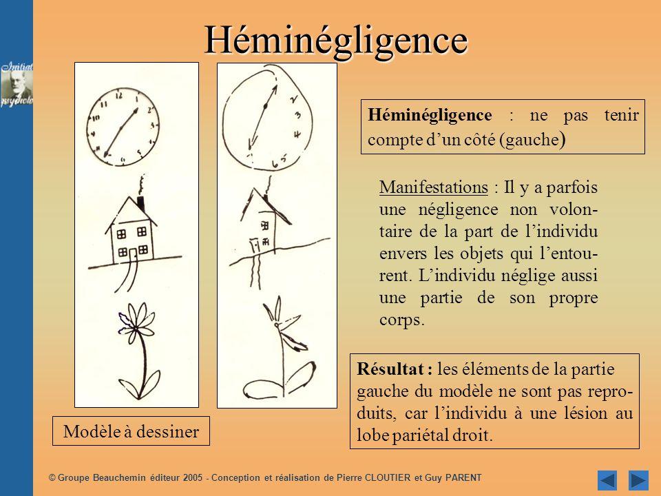 Héminégligence Héminégligence : ne pas tenir compte d'un côté (gauche)