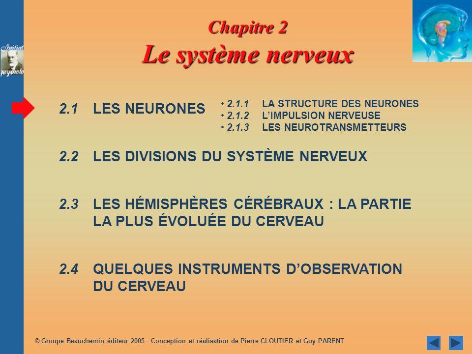 Chapitre 2 Le système nerveux