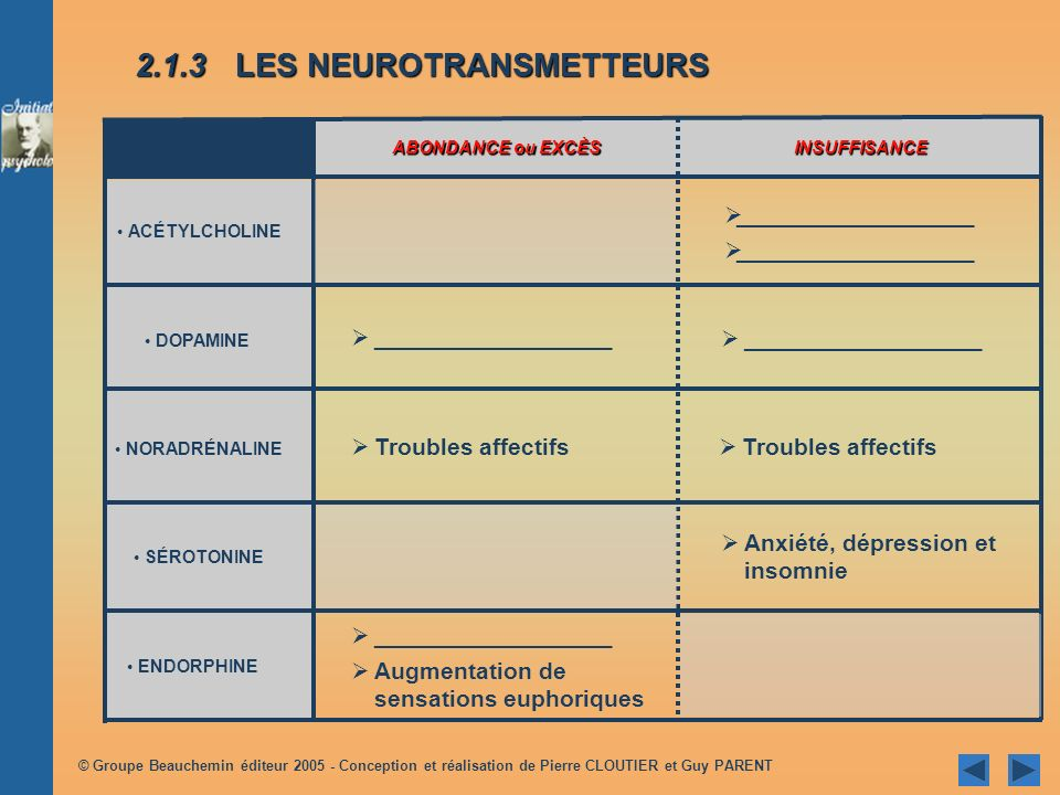 2.1.3 LES NEUROTRANSMETTEURS