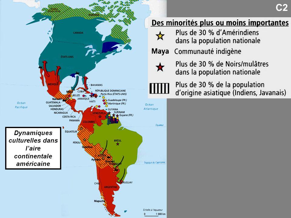 Dynamiques culturelles dans l'aire continentale américaine