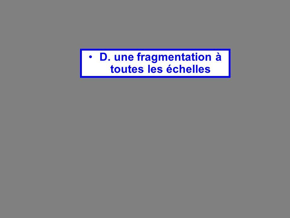 D. une fragmentation à toutes les échelles
