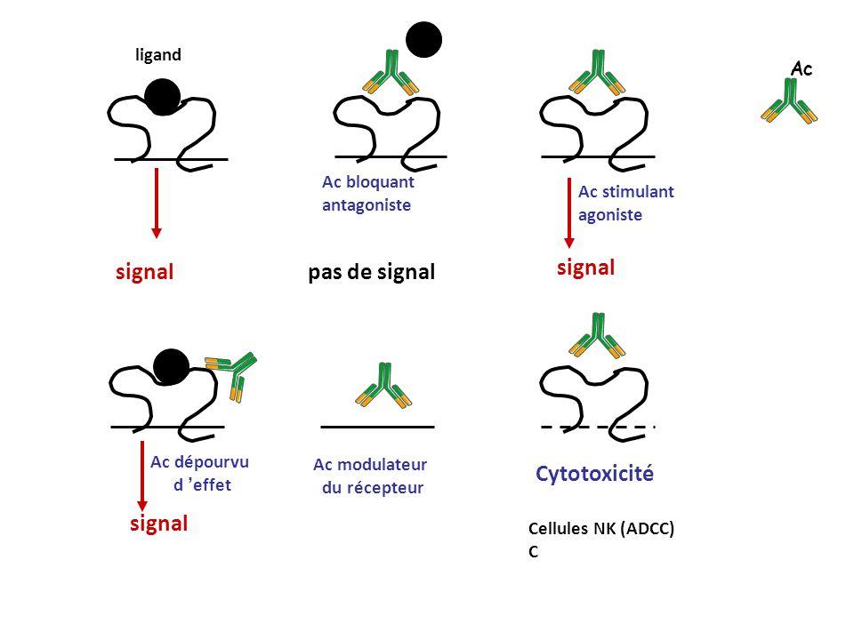 signal pas de signal signal Cytotoxicité signal ligand Ac Ac bloquant
