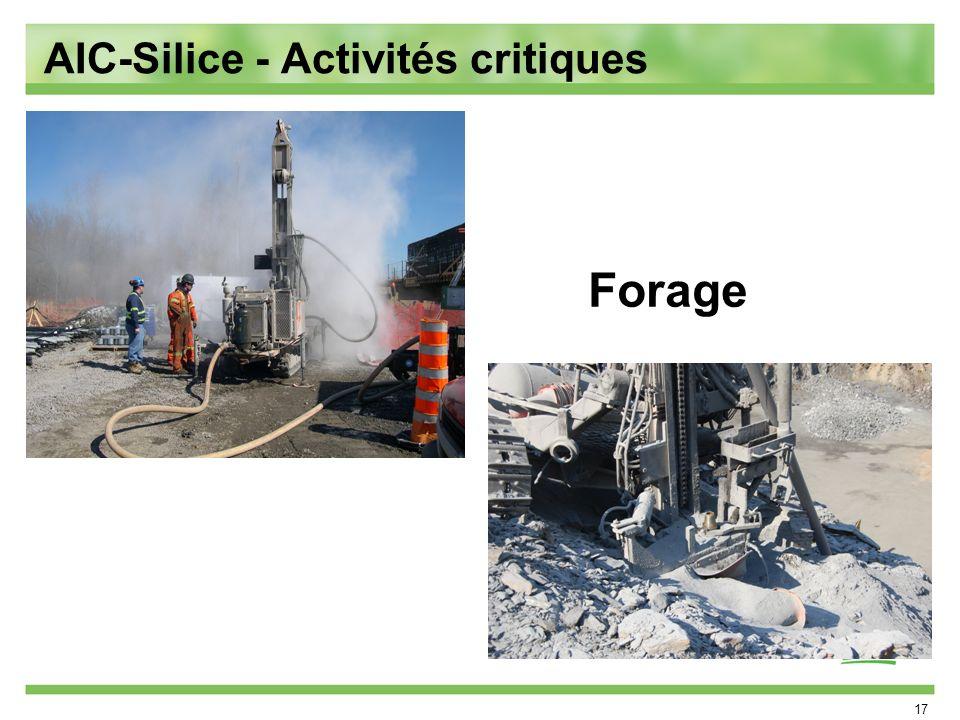 AIC-Silice - Activités critiques