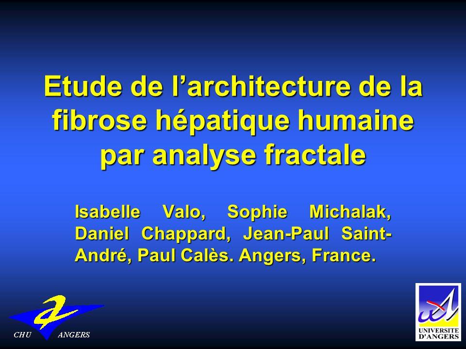 Etude de l'architecture de la fibrose hépatique humaine par analyse fractale