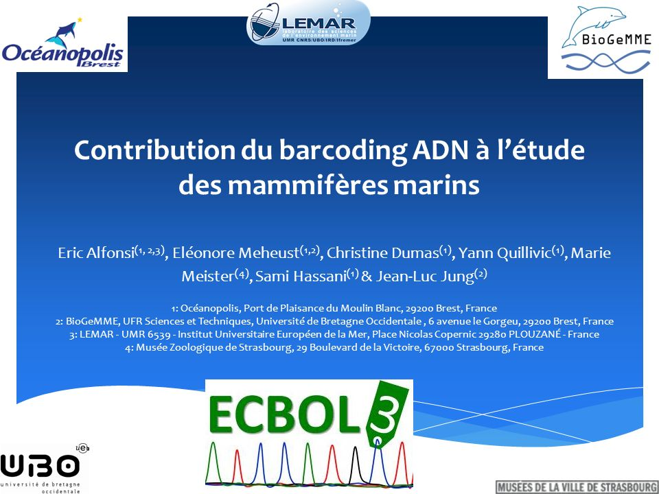 Contribution du barcoding ADN à l'étude des mammifères marins