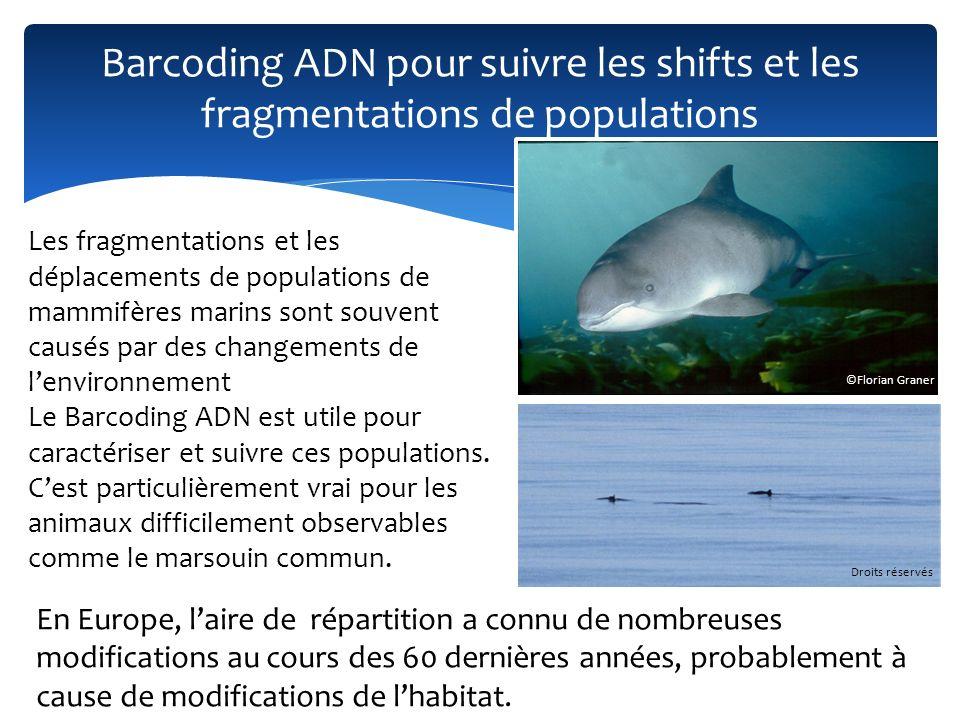 Barcoding ADN pour suivre les shifts et les fragmentations de populations