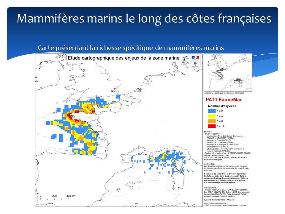Mammifères marins le long des côtes françaises