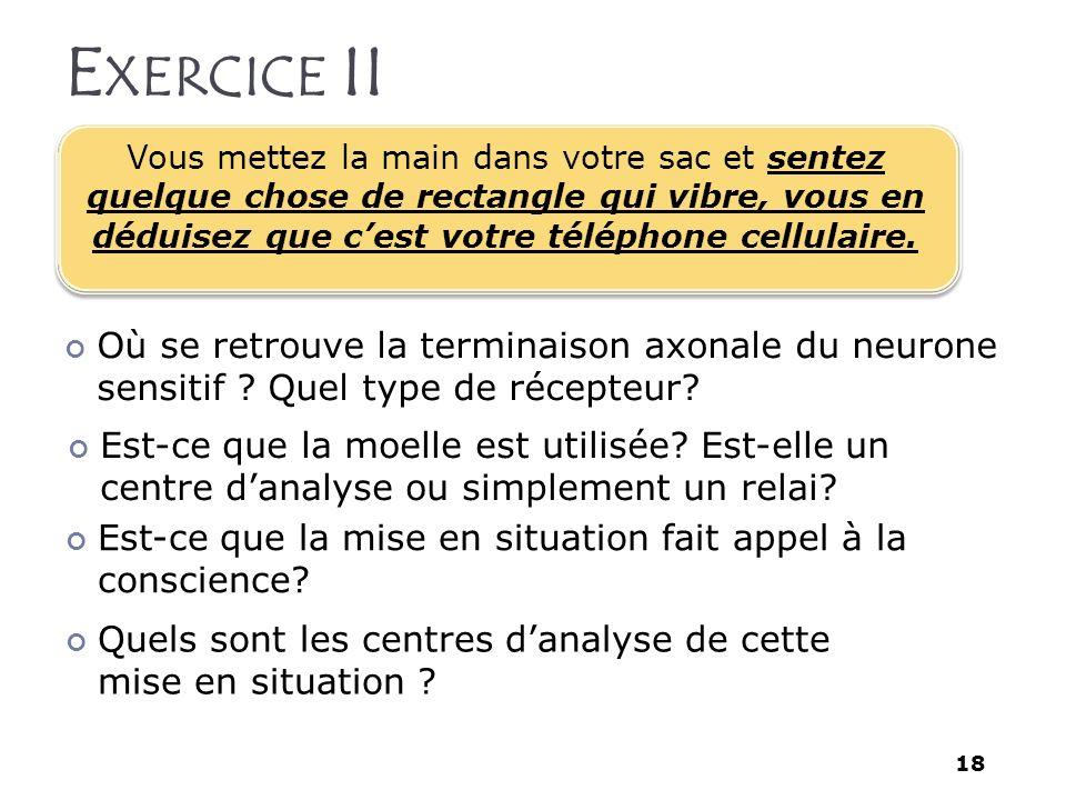 Exercice II