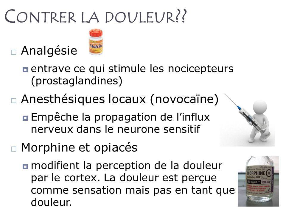 Contrer la douleur Analgésie Anesthésiques locaux (novocaïne)