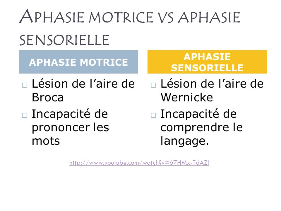 Aphasie motrice vs aphasie sensorielle