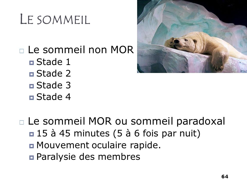 Le sommeil Le sommeil non MOR Le sommeil MOR ou sommeil paradoxal