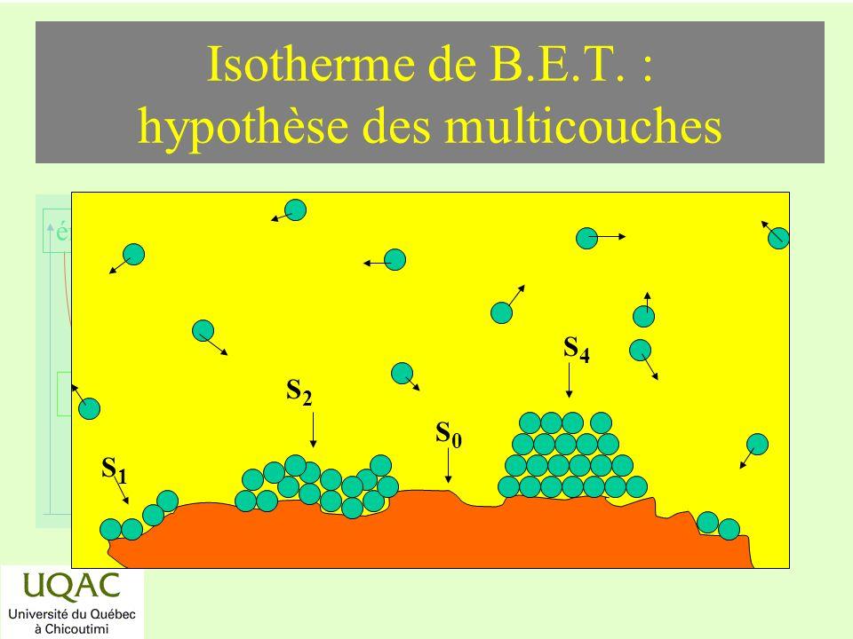 Isotherme de B.E.T. : hypothèse des multicouches