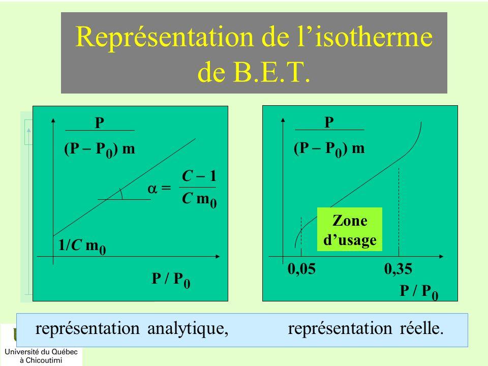 Représentation de l'isotherme de B.E.T.