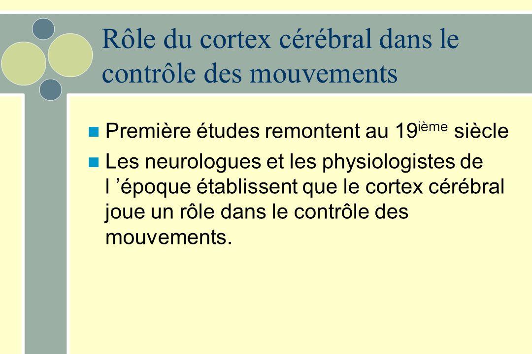 Rôle du cortex cérébral dans le contrôle des mouvements