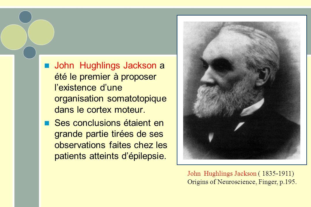 John Hughlings Jackson a été le premier à proposer l'existence d'une organisation somatotopique dans le cortex moteur.