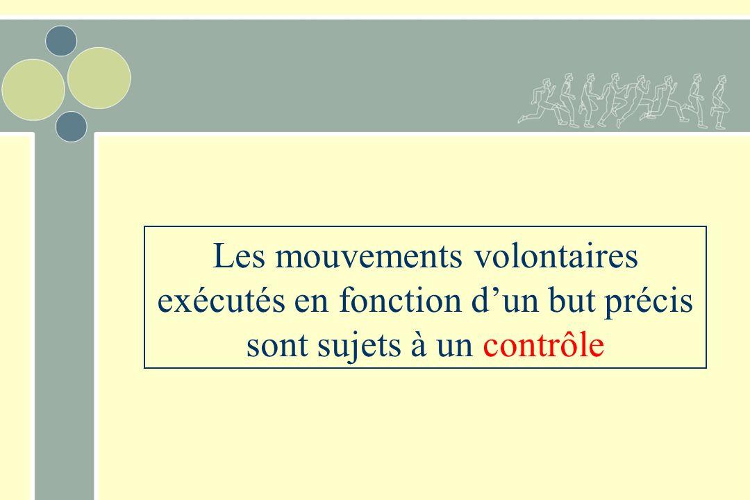 Les mouvements volontaires exécutés en fonction d'un but précis sont sujets à un contrôle