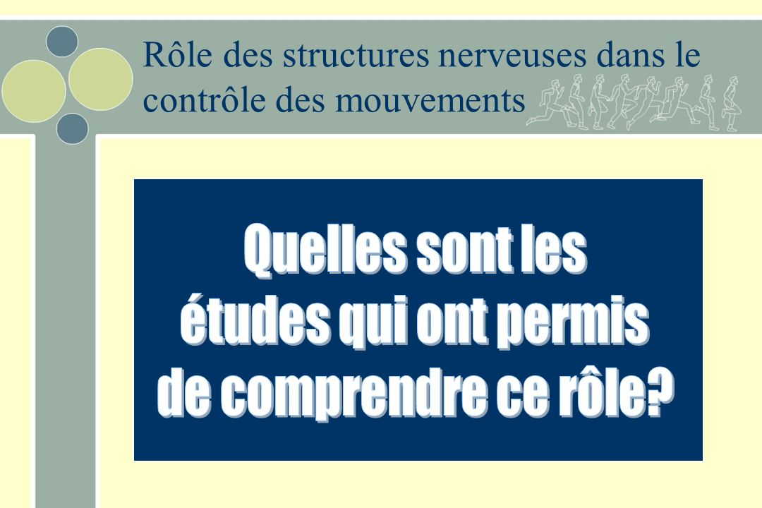 Rôle des structures nerveuses dans le contrôle des mouvements