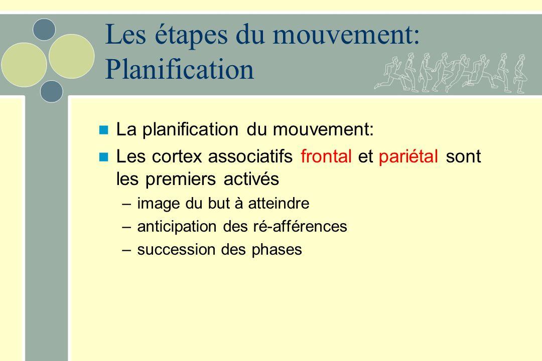 Les étapes du mouvement: Planification