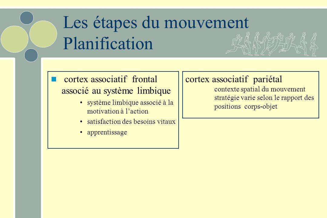Les étapes du mouvement Planification