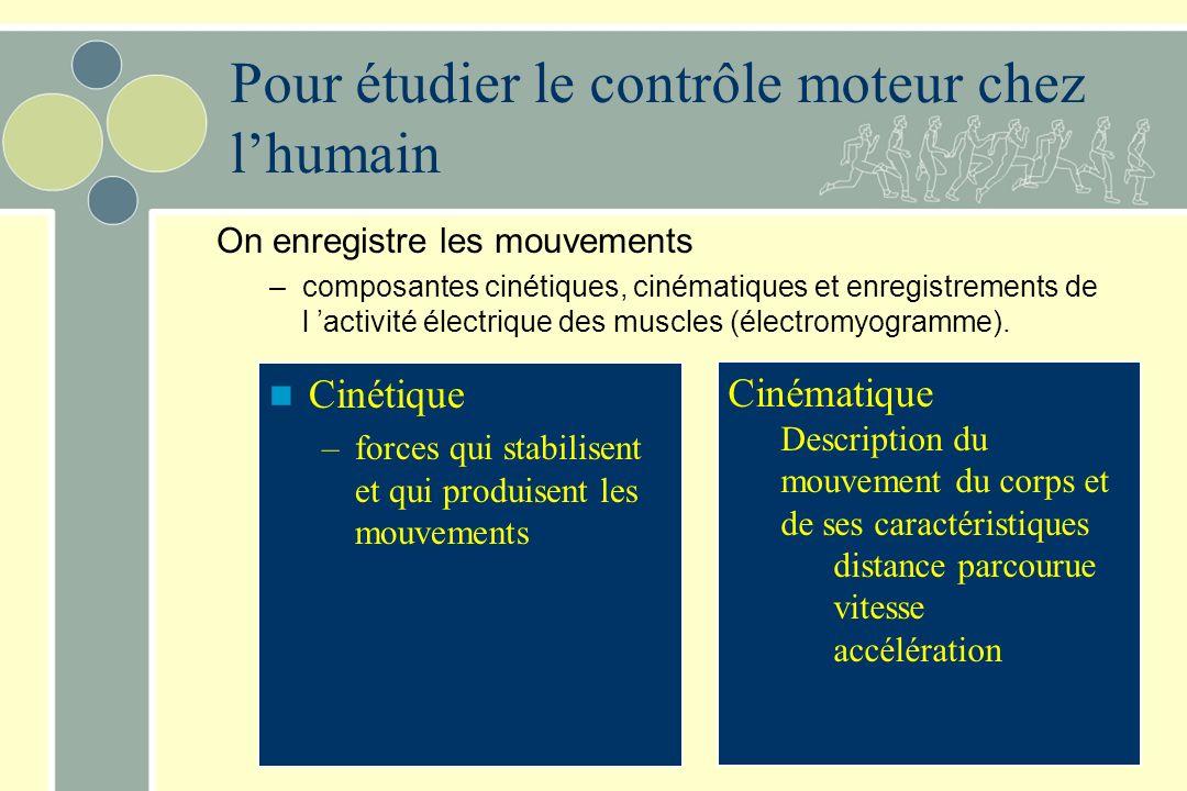 Pour étudier le contrôle moteur chez l'humain