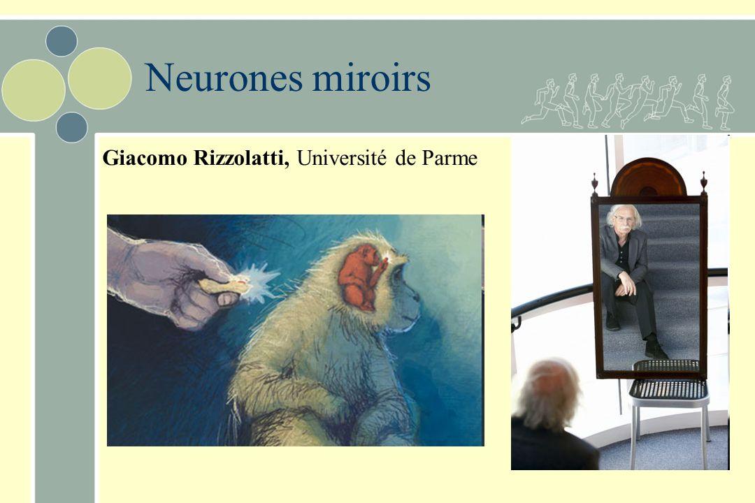 Planification et ex cution des mouvements volontaires for Neurone miroir autisme