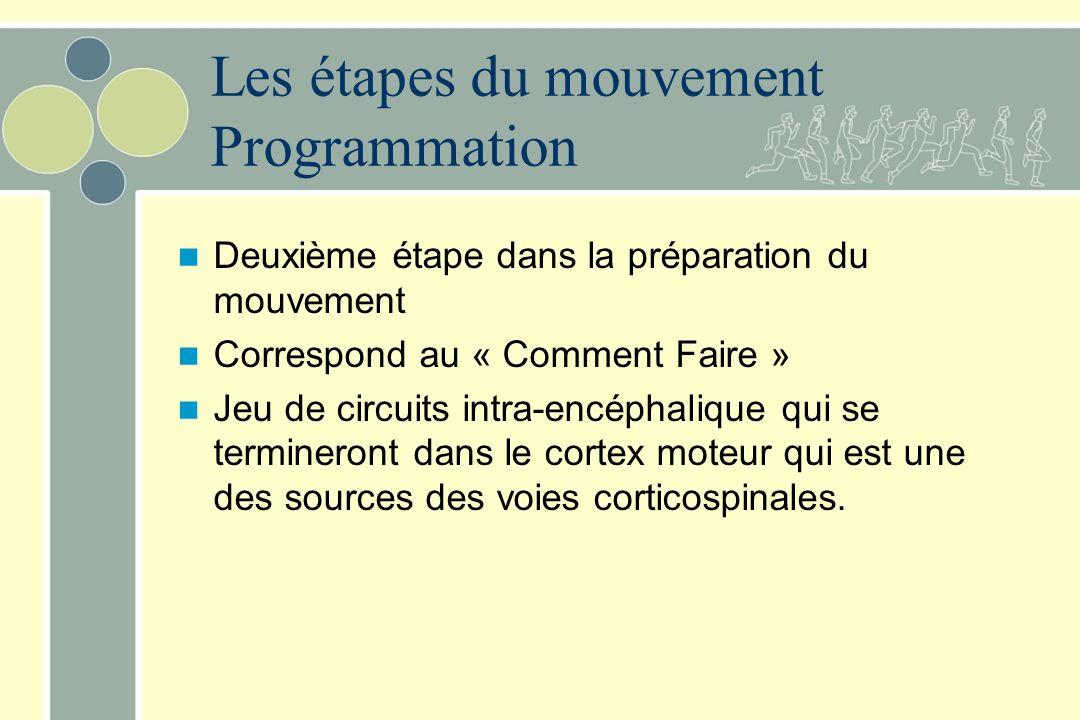 Les étapes du mouvement Programmation