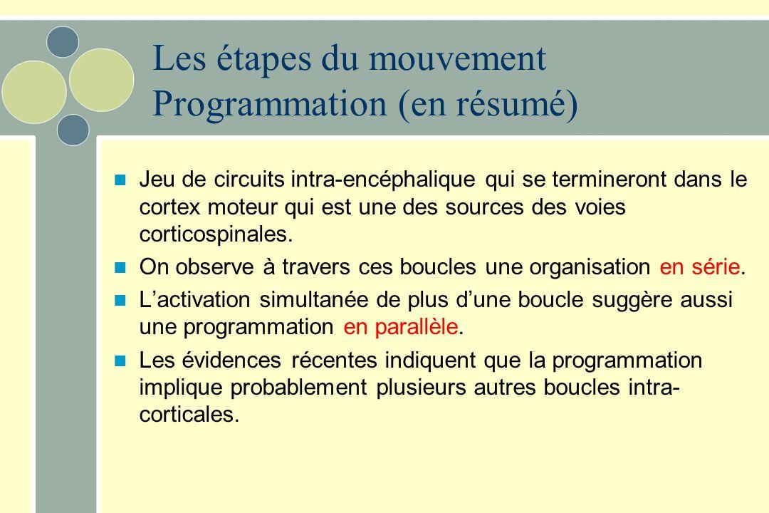 Les étapes du mouvement Programmation (en résumé)