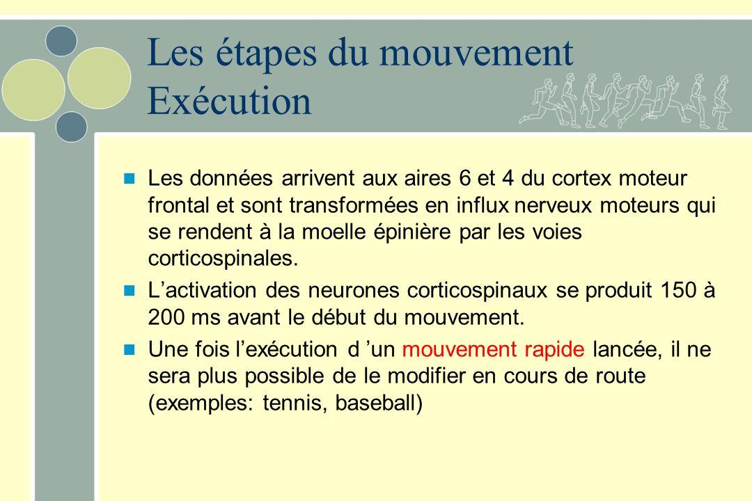 Les étapes du mouvement Exécution