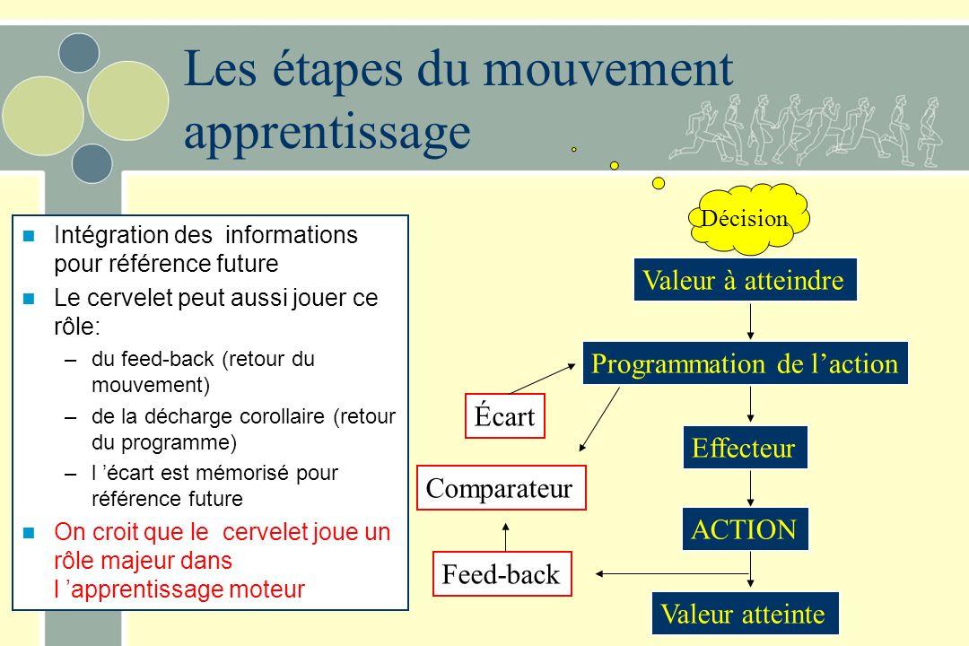 Les étapes du mouvement apprentissage