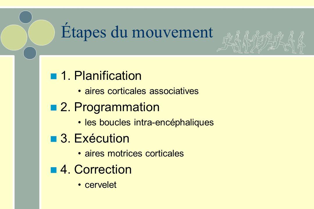 Étapes du mouvement 1. Planification 2. Programmation 3. Exécution