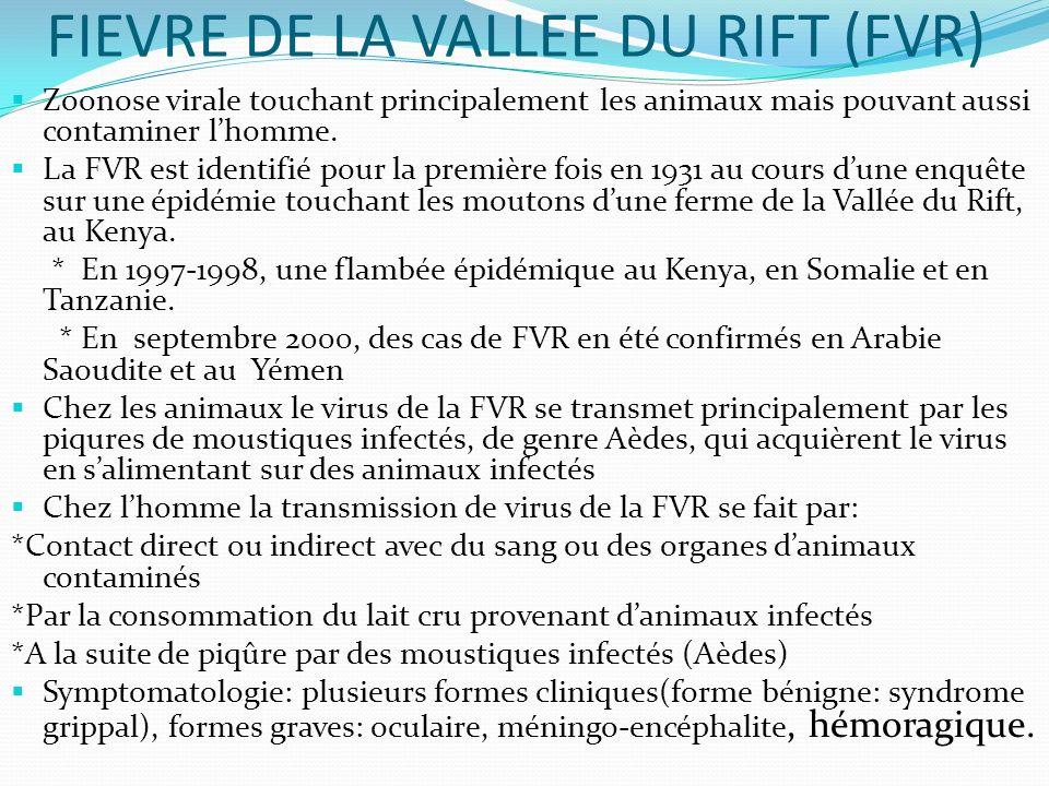 FIEVRE DE LA VALLEE DU RIFT (FVR)