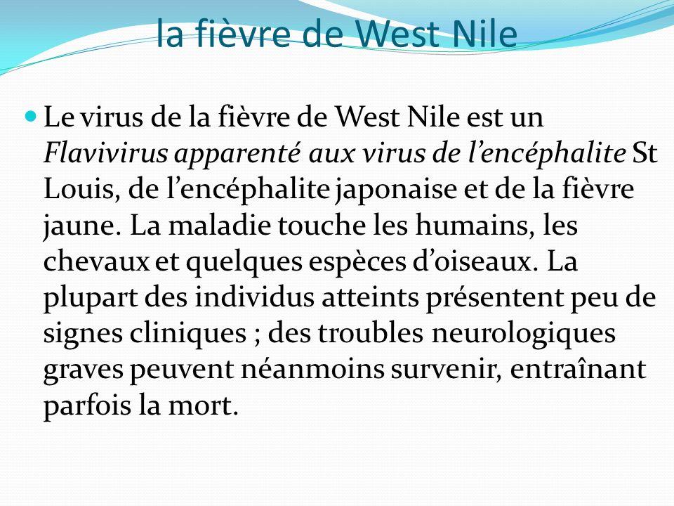 la fièvre de West Nile