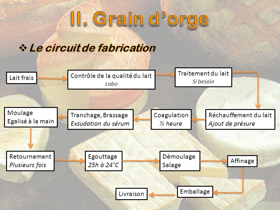 II. Grain d'orge Le circuit de fabrication Traitement du lait