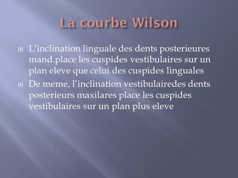 La courbe Wilson