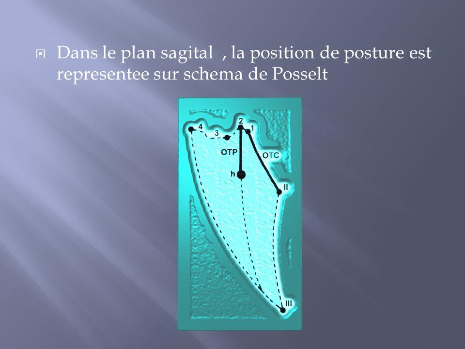Dans le plan sagital , la position de posture est representee sur schema de Posselt
