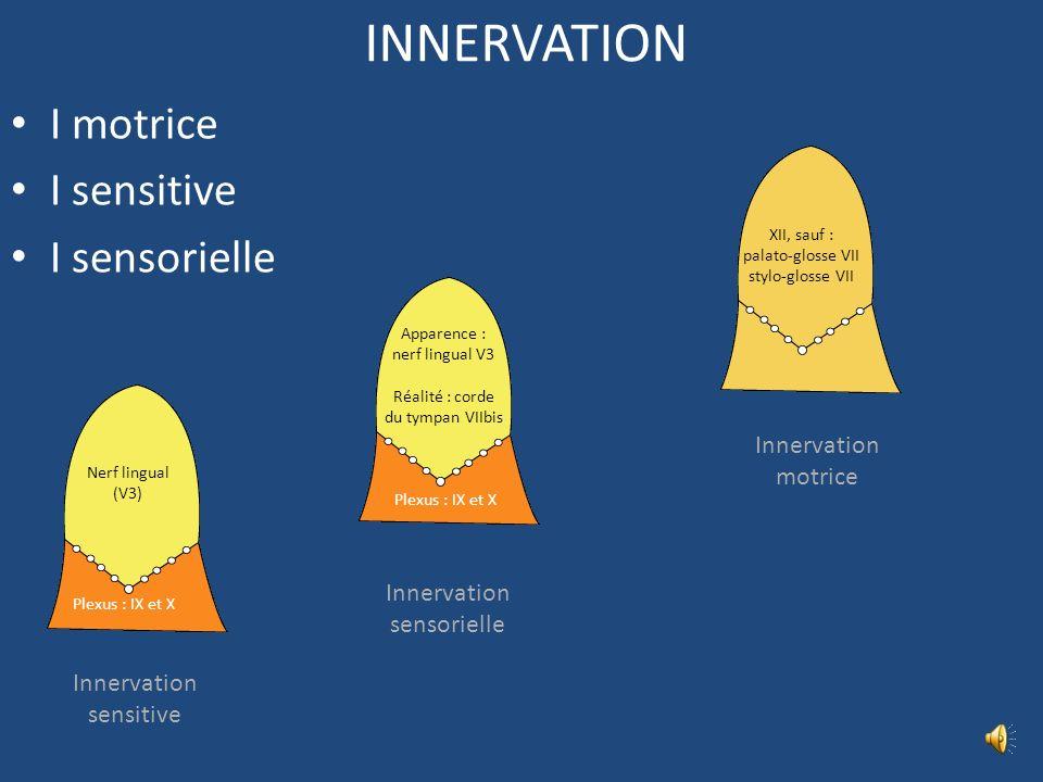 INNERVATION I motrice I sensitive I sensorielle Innervation motrice