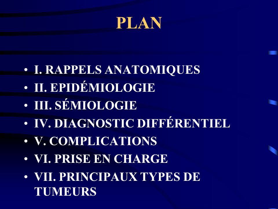 PLAN I. RAPPELS ANATOMIQUES II. EPIDÉMIOLOGIE III. SÉMIOLOGIE