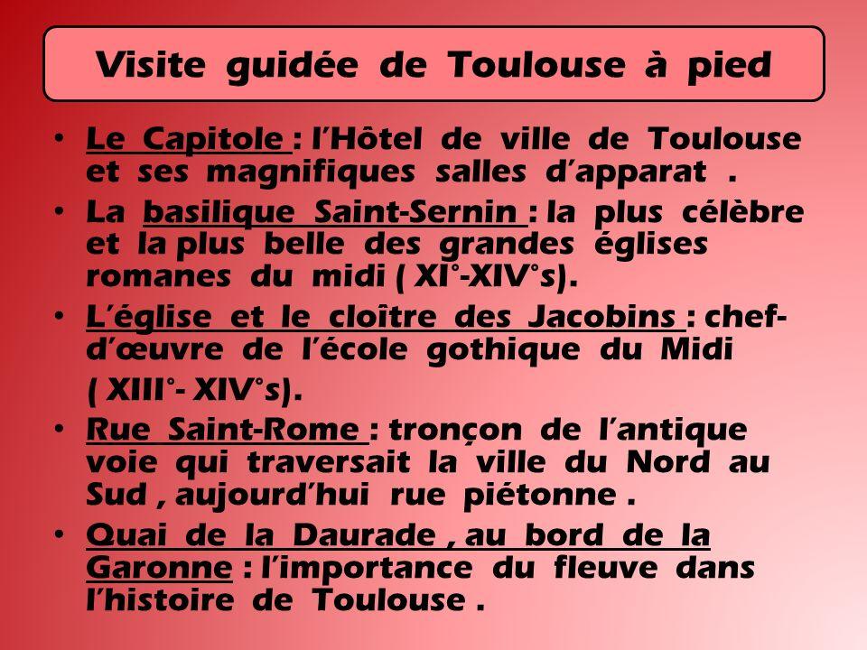 Visite guidée de Toulouse à pied