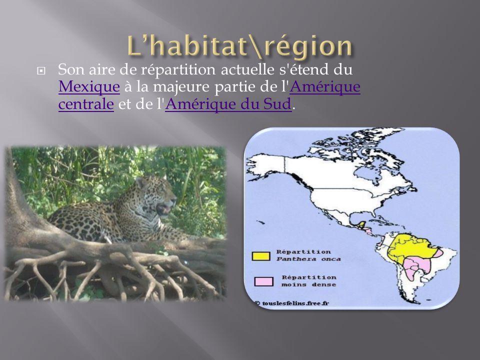 L'habitat\région Son aire de répartition actuelle s étend du Mexique à la majeure partie de l Amérique centrale et de l Amérique du Sud.