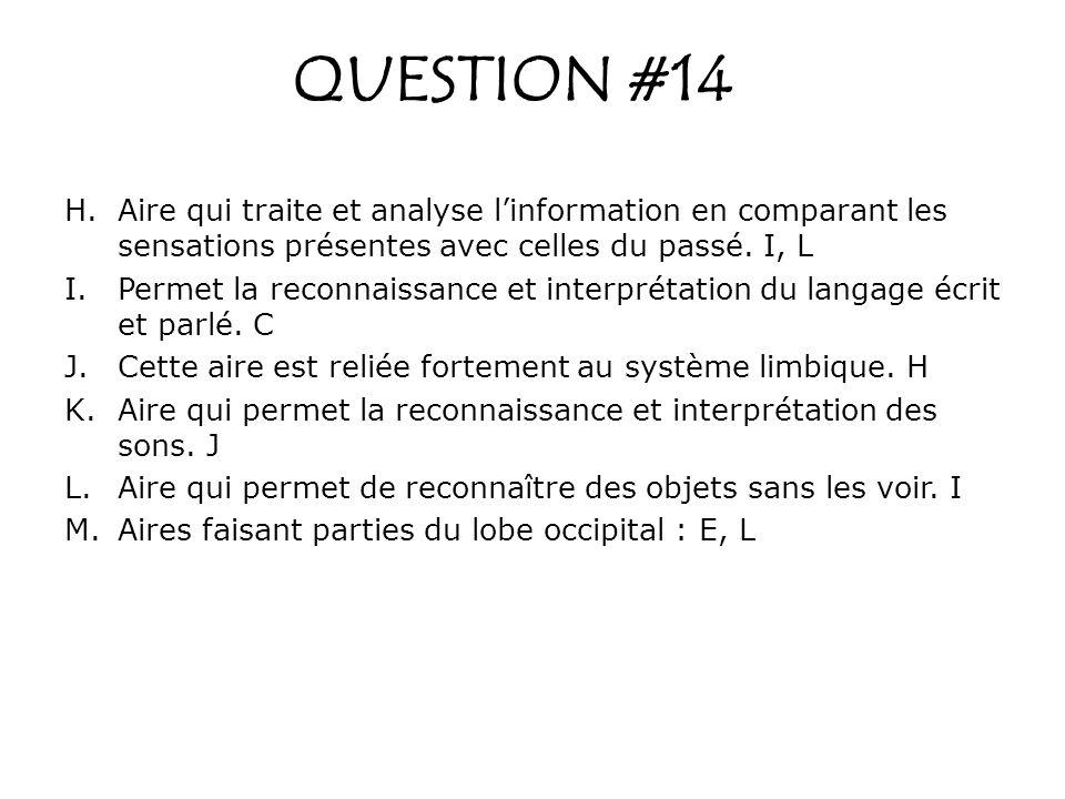 QUESTION #14 Aire qui traite et analyse l'information en comparant les sensations présentes avec celles du passé. I, L.