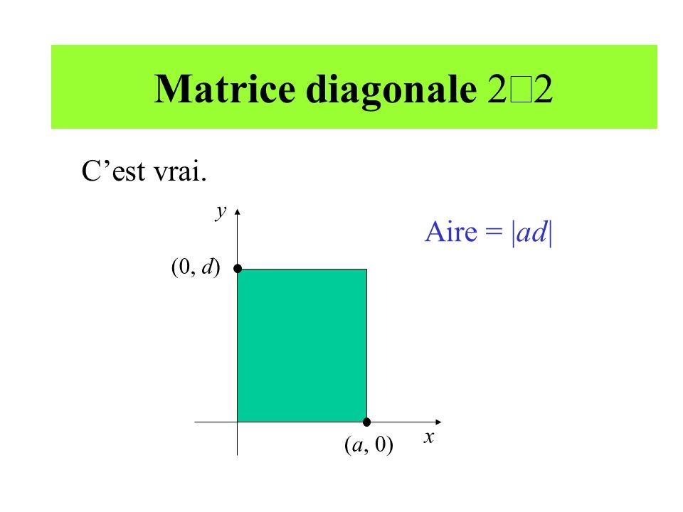 Matrice diagonale 2´2 C'est vrai. y x Aire = |ad| (a, 0) (0, d)
