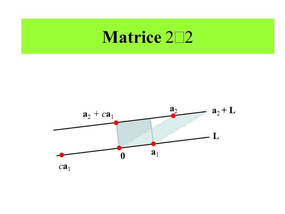 Matrice 2´2 a2 a2 + L a2 + ca1 L a1 ca1