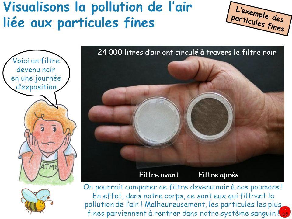 Visualisons la pollution de l'air liée aux particules fines