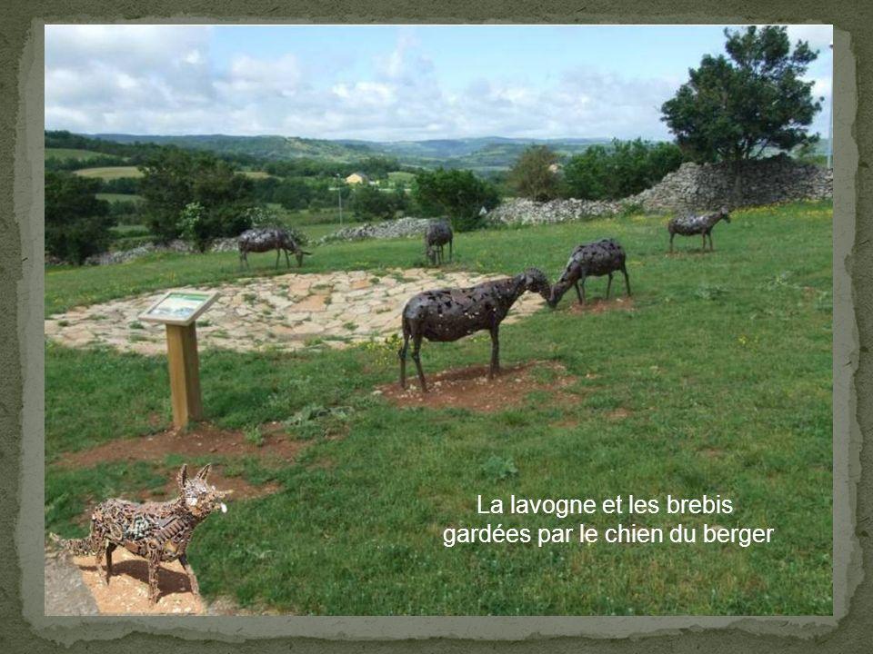 Les brebis autour de la lavogne, gardées par le chien du berger