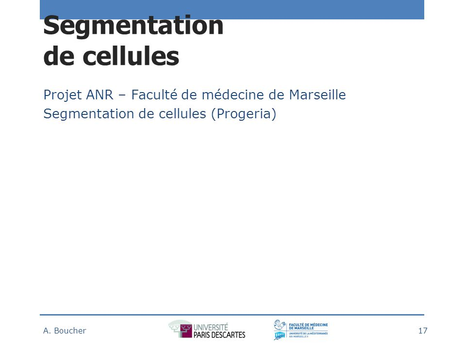 Segmentation de cellules
