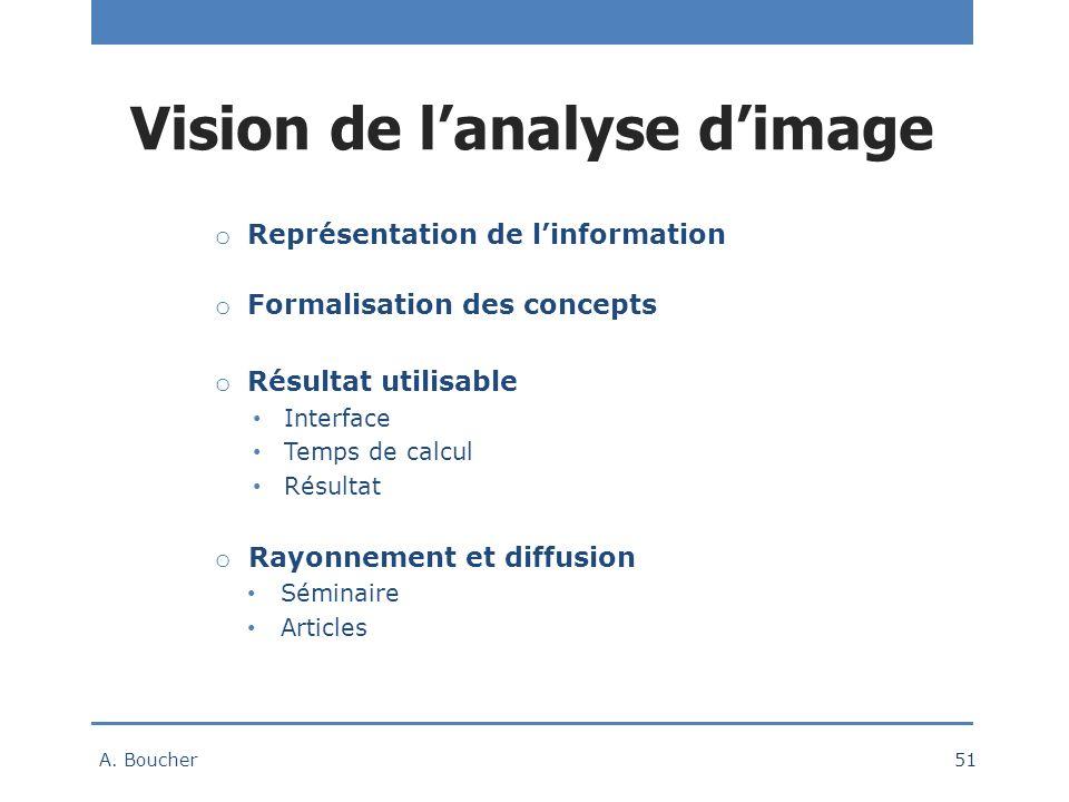 Vision de l'analyse d'image