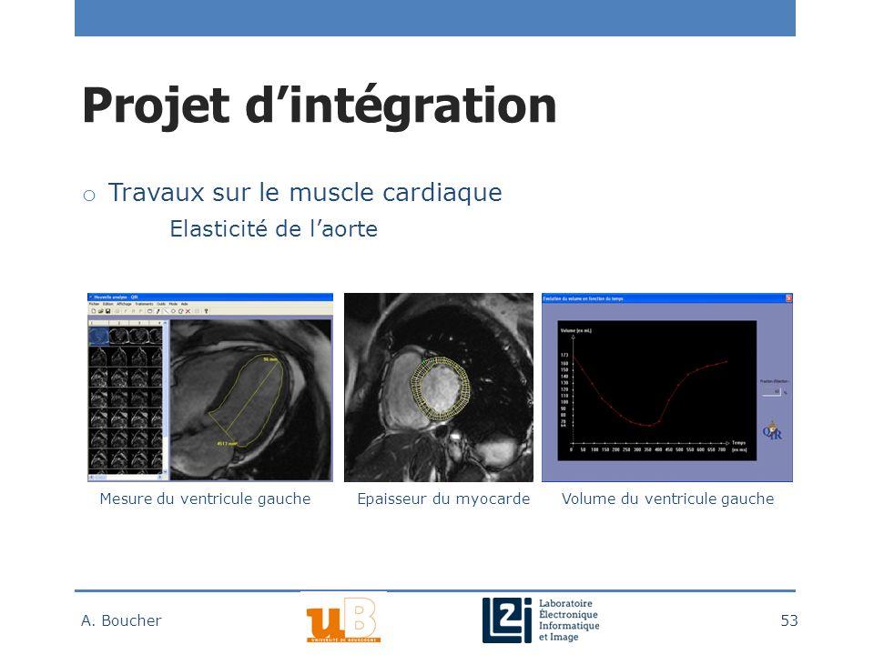 Projet d'intégration Travaux sur le muscle cardiaque